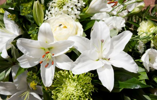 mixed-white-funeral-flowers-157436440-588120043df78c2ccd0e2b44.jpg